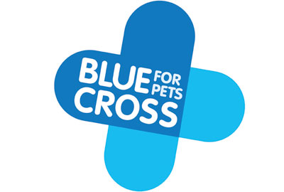 Join Kari from the Blue Cross